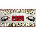 Baseball Banner 101