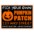 Pumpkin Patch 102